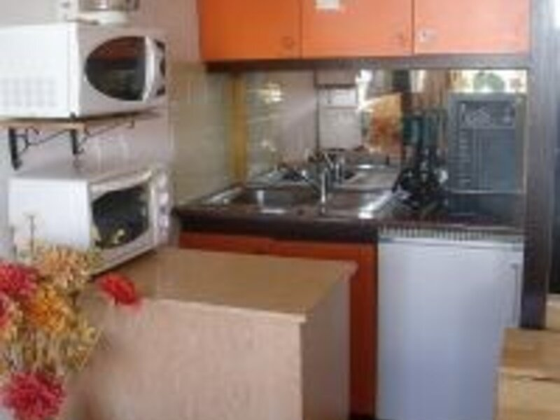 BOT102 ARETTE, holiday rental in Isaba
