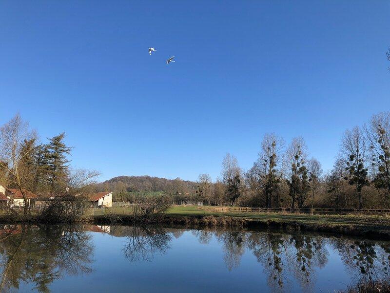 Le domaine du Moulin, location de vacances à Mons-en-Laonnois