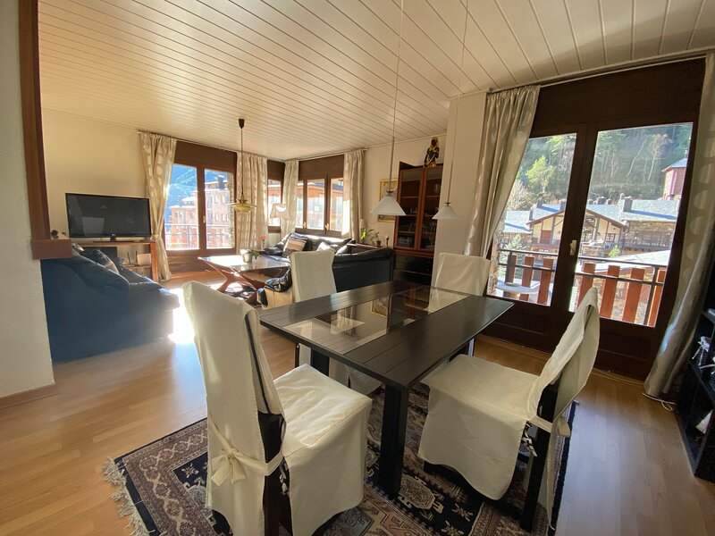 Apartment with mountain view, holiday rental in Engolasters