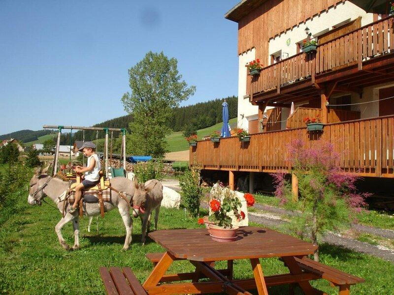 La Lauzière - La Marmotte, holiday rental in Autrans