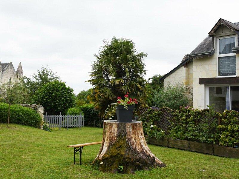 Vue d'Abbaye, holiday rental in Ingrandes-de-Touraine