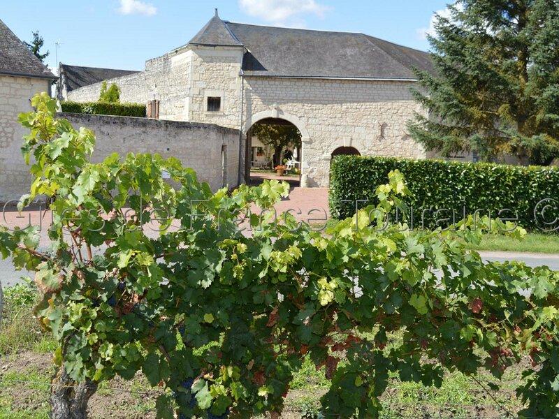 Les Tilleuls, holiday rental in Panzoult