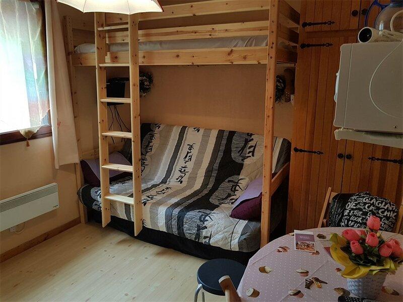 Studio 2pl 2 couchages ST MICHEL DE CHAILLOL, holiday rental in La Motte-en-Champsaur