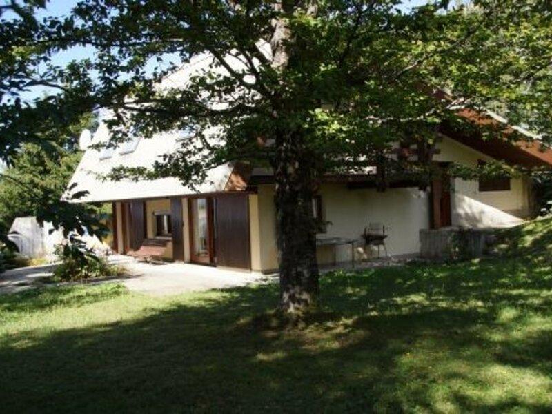 CHALET 10 pl 10 couchages ST MICHEL DE CHAILLOL, holiday rental in La Motte-en-Champsaur