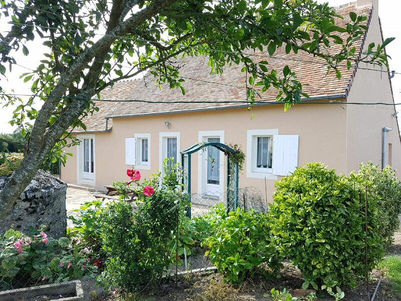 Le Petit Braye, holiday rental in Marigne-Laille