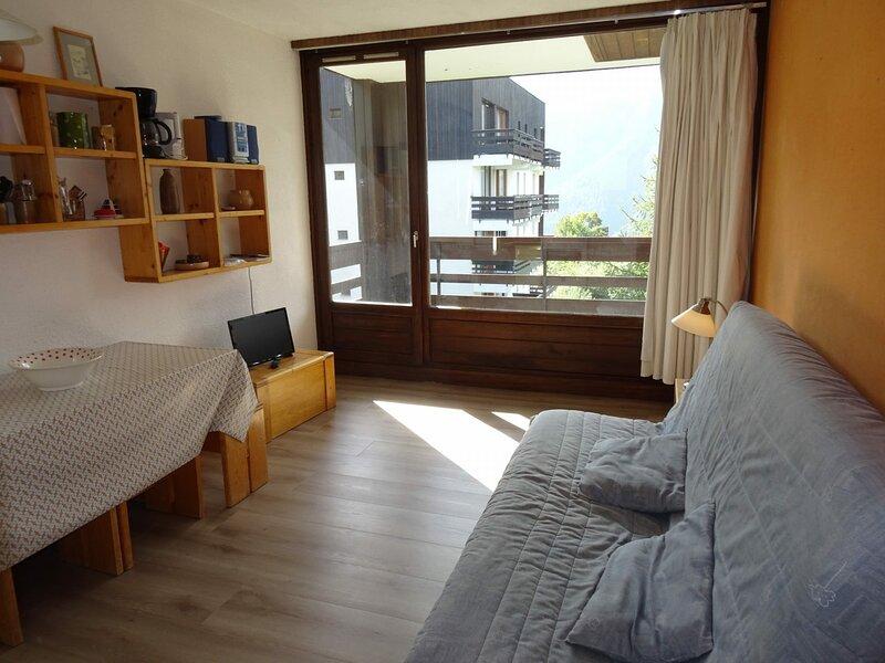 Appartement 2 pièces 6 personnes à Plan Peisey proche des commerces et des, holiday rental in Peisey