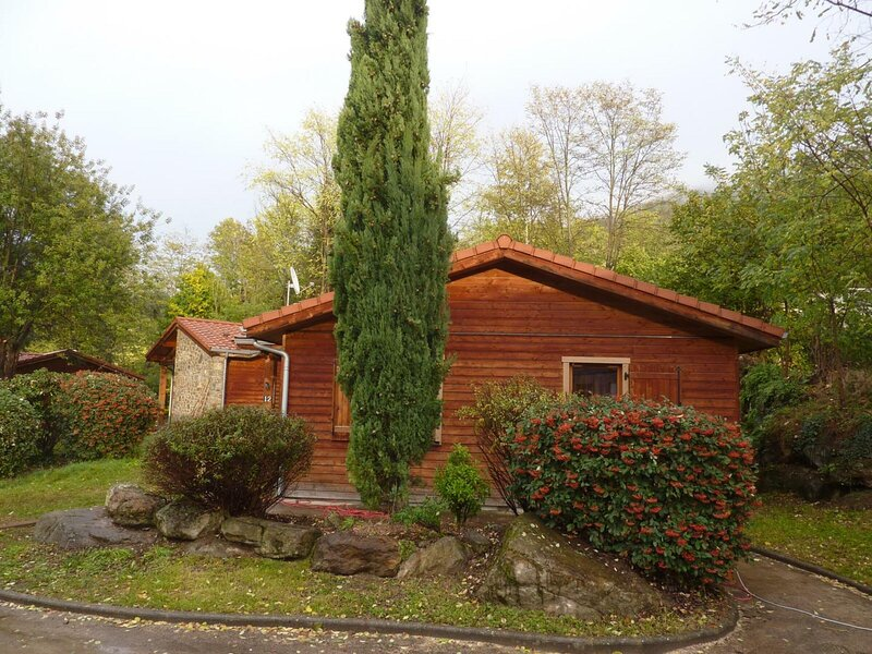 BOUTON D'OR n°12, holiday rental in Les Monts d'Olmes