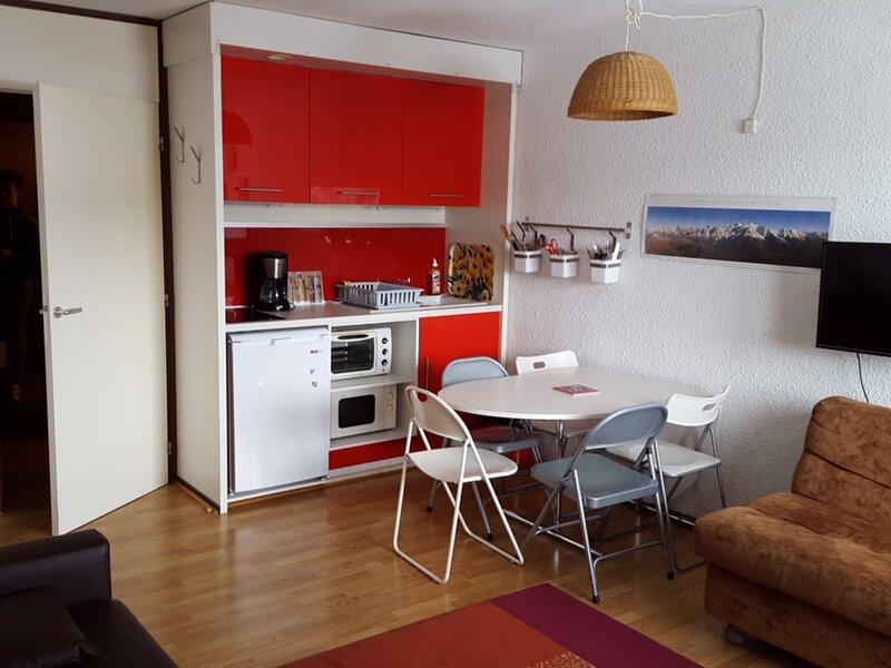Confortable studio avec coin cuisine rénové, holiday rental in Flaine
