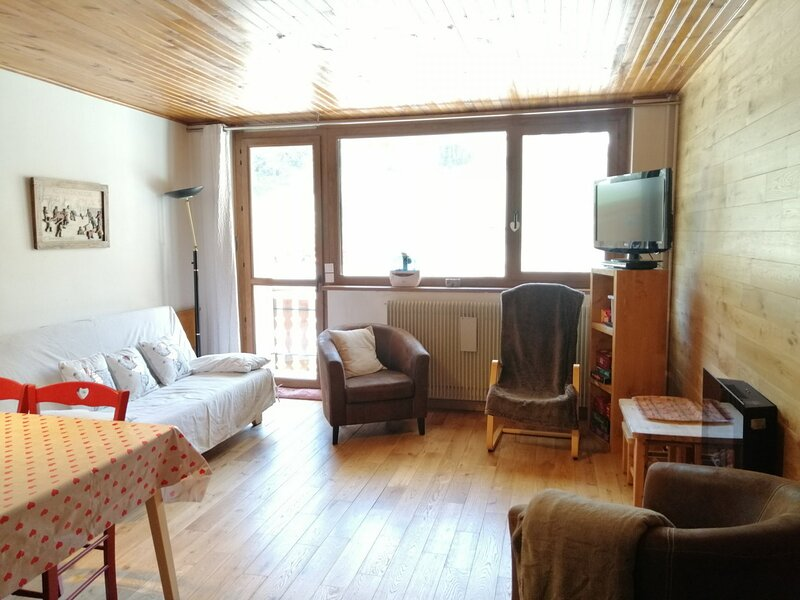 PRA LOUP 1600 - 6 pers, 50 m2, 2/1, holiday rental in Pra Loup