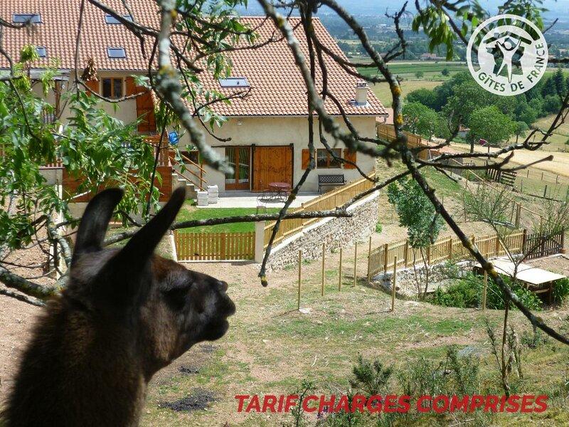 La Bruyère aux Lamas, holiday rental in Saint-Just-en-Chevalet