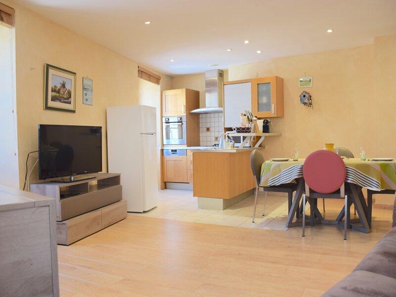 Appartement 3 pièces au coeur du centre historique d'Evian, alquiler vacacional en Lausana