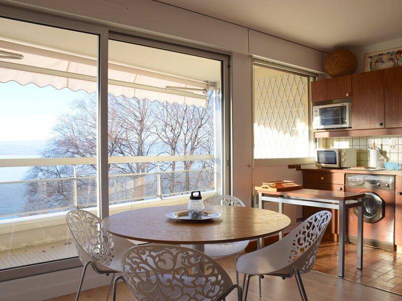 Spacieux studio avec grand bacon et magnifique vu sur le lac Léman., holiday rental in Ecublens