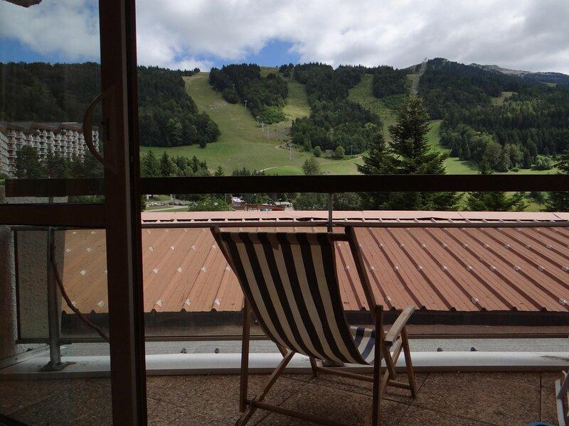 Résidence au pied des pistes de ski de Villard de Lans, holiday rental in Le Gua
