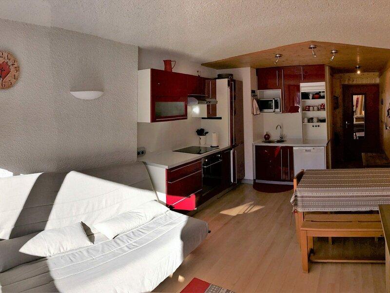 Très beau 2 pièces avec coin nuit au pied des pistes de Corrençon, holiday rental in La Chapelle-en-Vercors