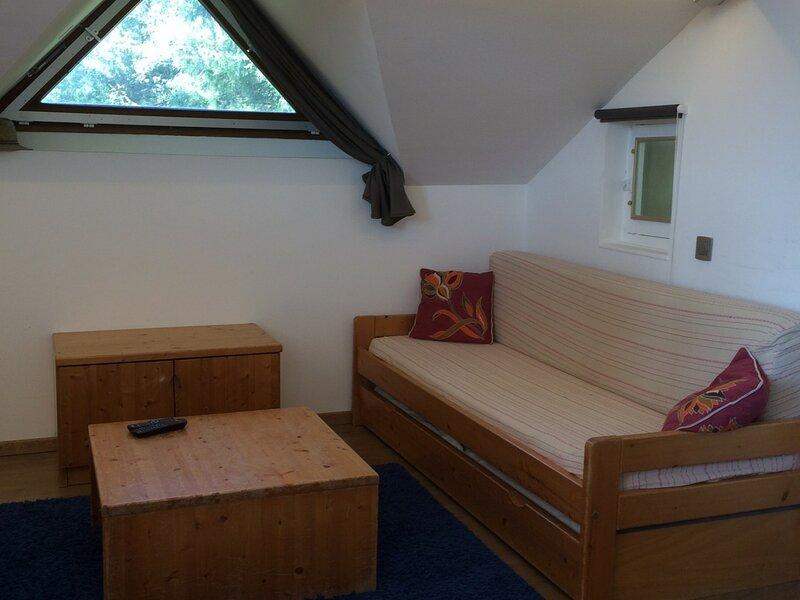 VILLARD-DE-LANS - 4 pers, 22 m2, 1/0, holiday rental in Varces-Allieres-et-Risset
