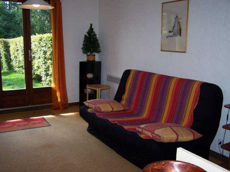 Appartement à l'entrée du Village de Corrençon, départ des navettes gratuites, holiday rental in La Chapelle-en-Vercors