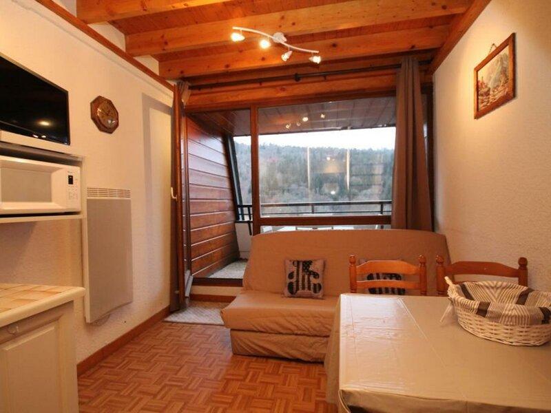 LE MONT DORE T2 EN DUPLEX AVEC BALCON, holiday rental in Chambon-sur-Lac