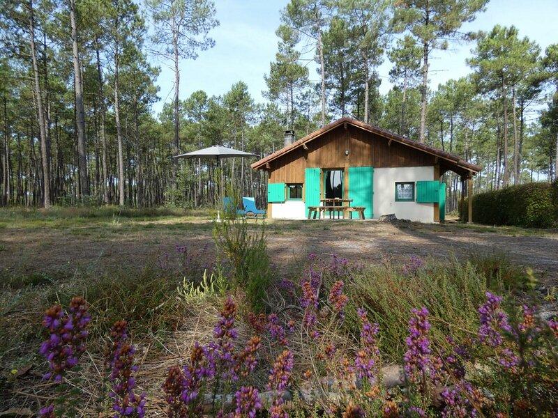 Gîte Vert, holiday rental in Labrit