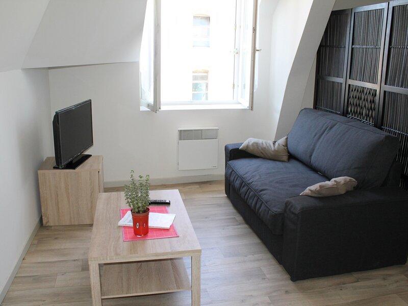 Appartement en Face des Thermes du Saint Roch, holiday rental in La Roche-Posay