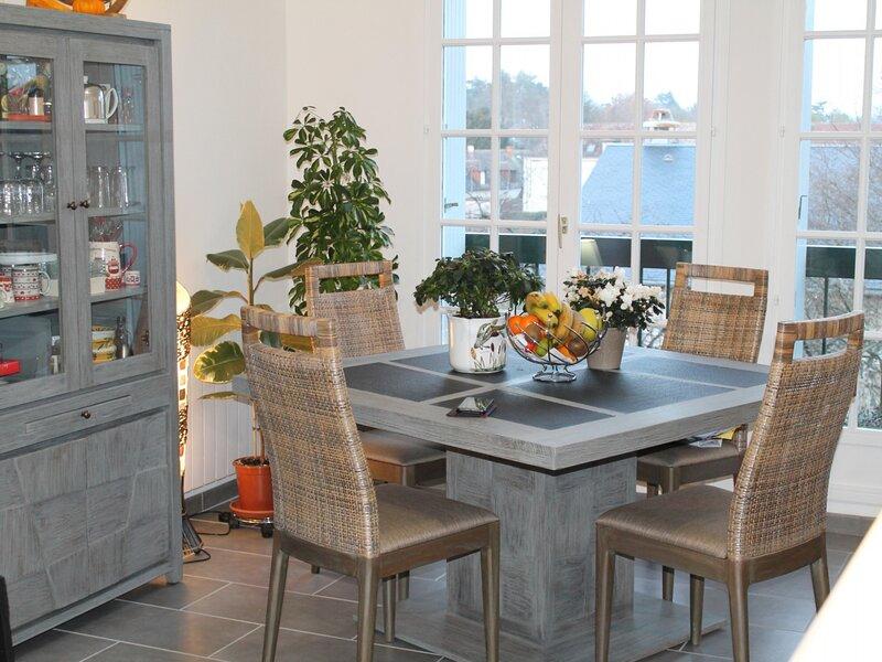 Appartement à 150m des Thermes du Saint Roch, holiday rental in La Roche-Posay