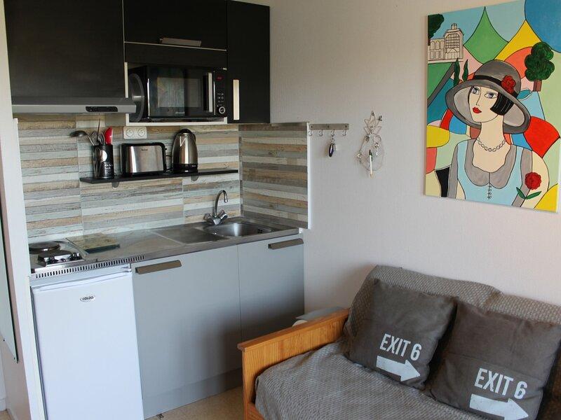 Appartement à 150m des Thermes du Connétable à LA ROCHE POSAY, casa vacanza a La Bussiere