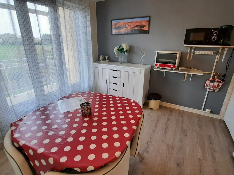 Appartement proche THERMES DU CONNETABLE, holiday rental in La Roche-Posay