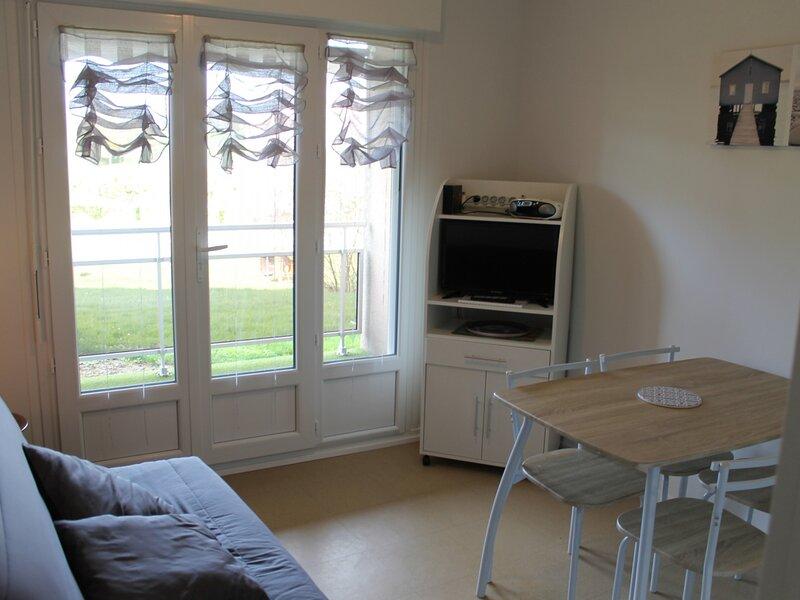 Appartement proche THERMES DU CONNETABLE, casa vacanza a La Bussiere