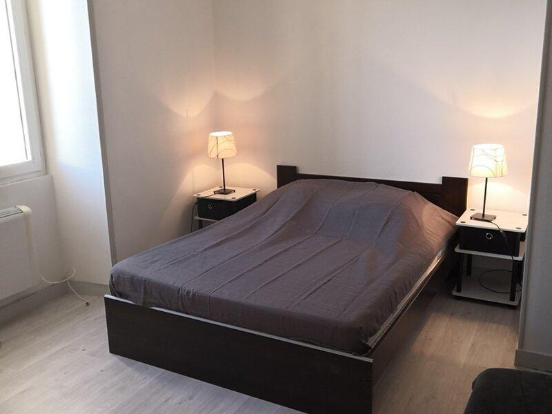 Appartement en face des Thermes du Saint Roch à LA ROCHE POSAY., holiday rental in La Roche-Posay