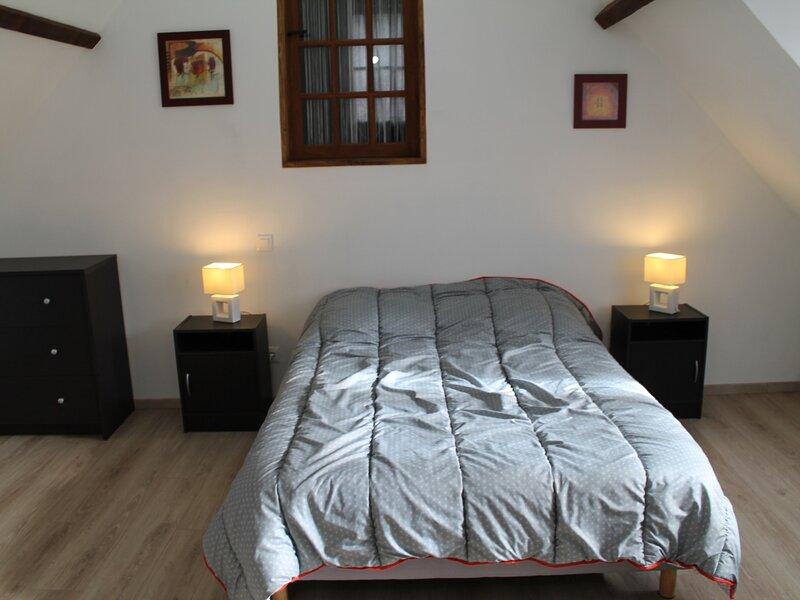 Appartement 200m des Thermes du Saint Roch à LA ROCHE POSAY, holiday rental in La Roche-Posay