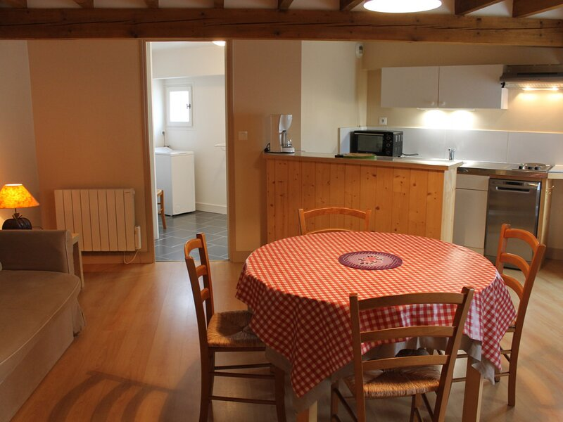 Appartement 70m Thermes Saint Roch, holiday rental in La Roche-Posay