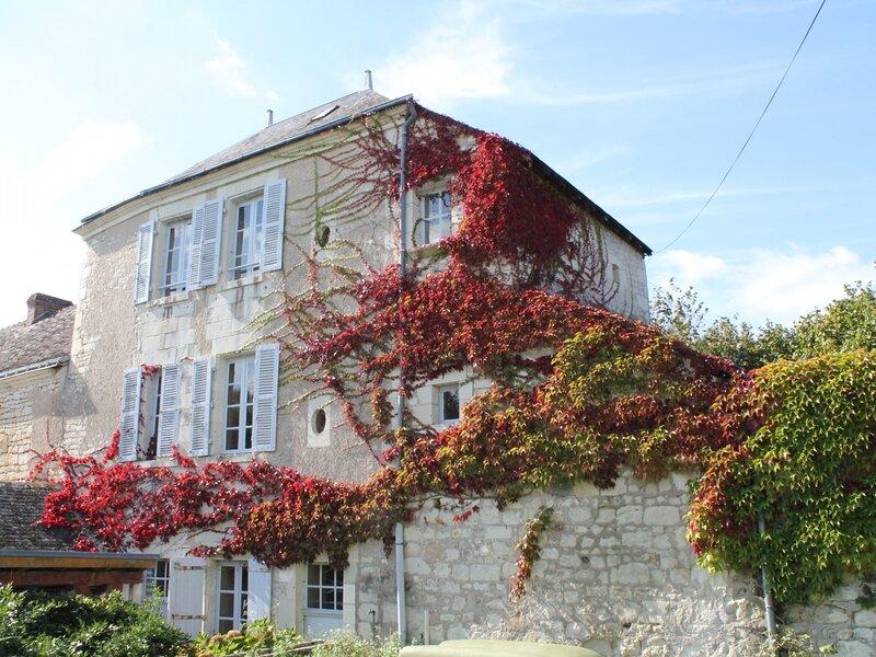 Gite au calme vue sur lHippodrome de LA ROCHE POSAY, holiday rental in La Roche-Posay