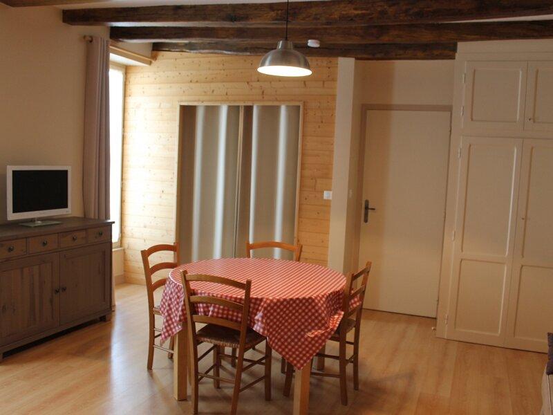 Appartement à 70m des Thermes du Saint Roch, holiday rental in La Roche-Posay