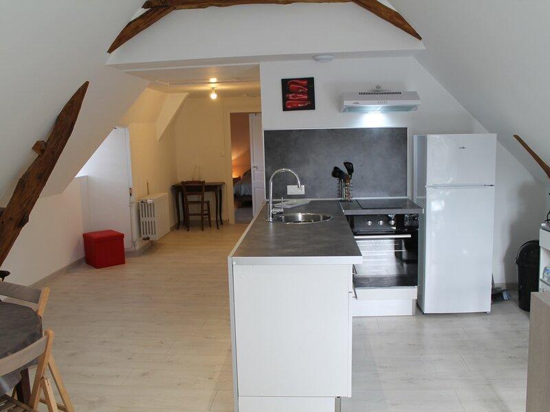 Appartement à 200m des Thermes du Saint Roch, holiday rental in La Roche-Posay