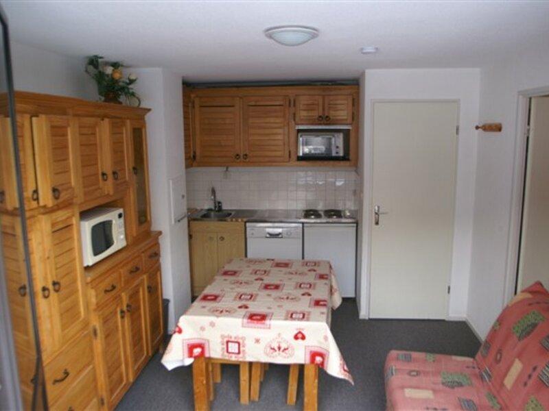 2 pièces cabine au pied des pistes résidence Sapins, holiday rental in Sainte-Agnes
