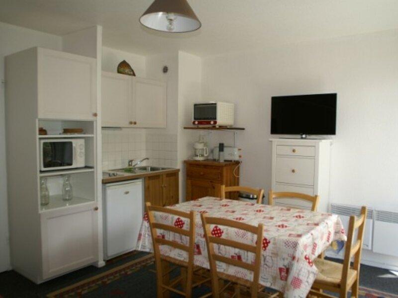 Studio cabine au pied des pistes résidence Sapins, holiday rental in Sainte-Agnes