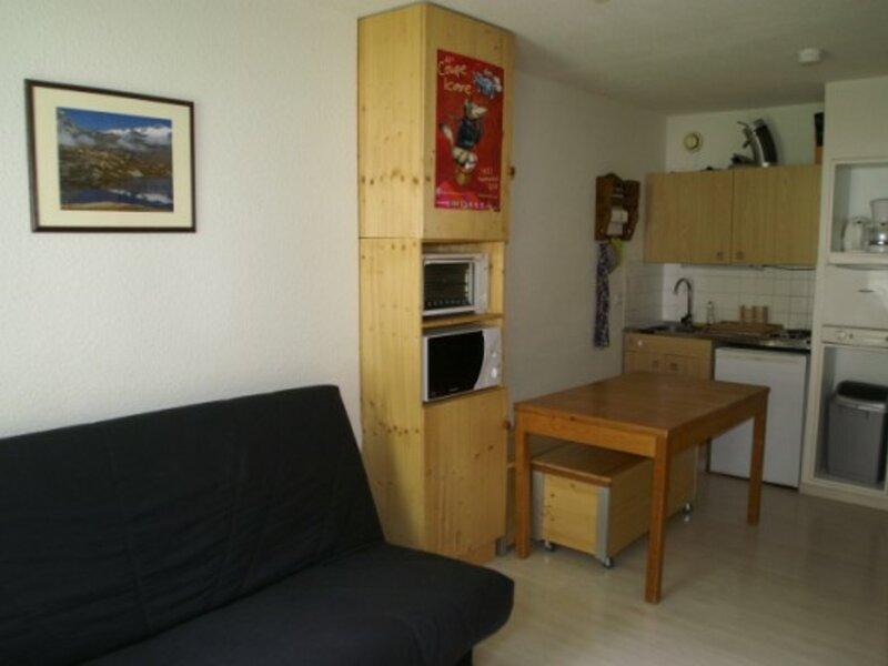 Studio au pied des pistes résidence Sapins, holiday rental in Sainte-Agnes