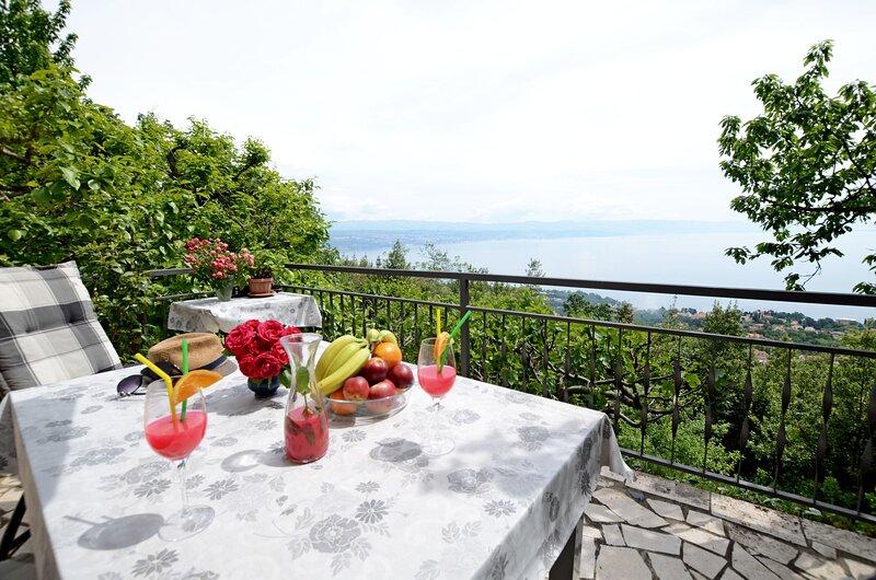 Apartments Viktoria, holiday rental in Dobrec