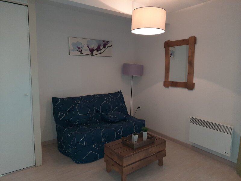 Nice apartment with shared pool, holiday rental in Saint-Paul-en-Born