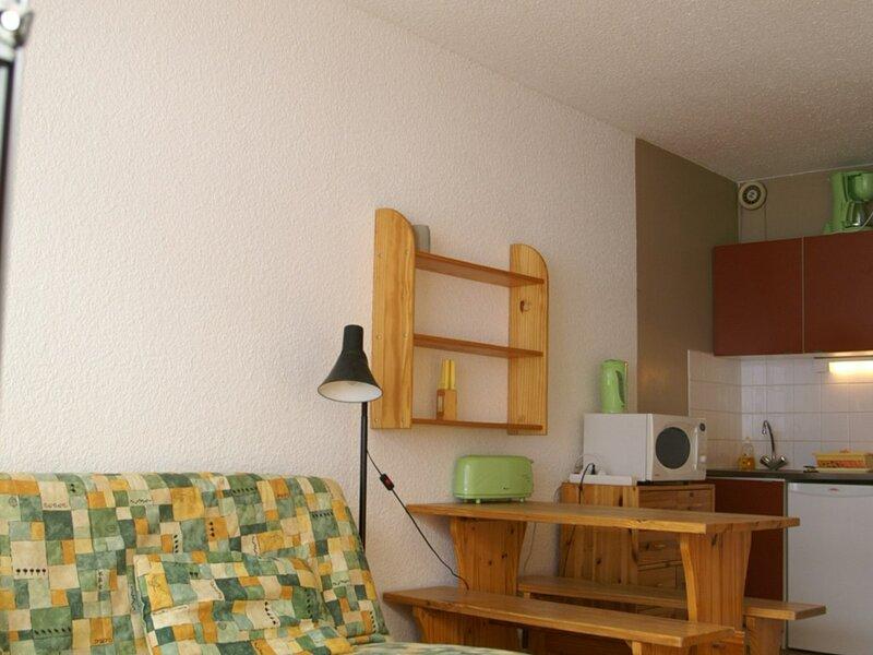Studio au pied des pistes résidence Cottepens, holiday rental in Les Adrets