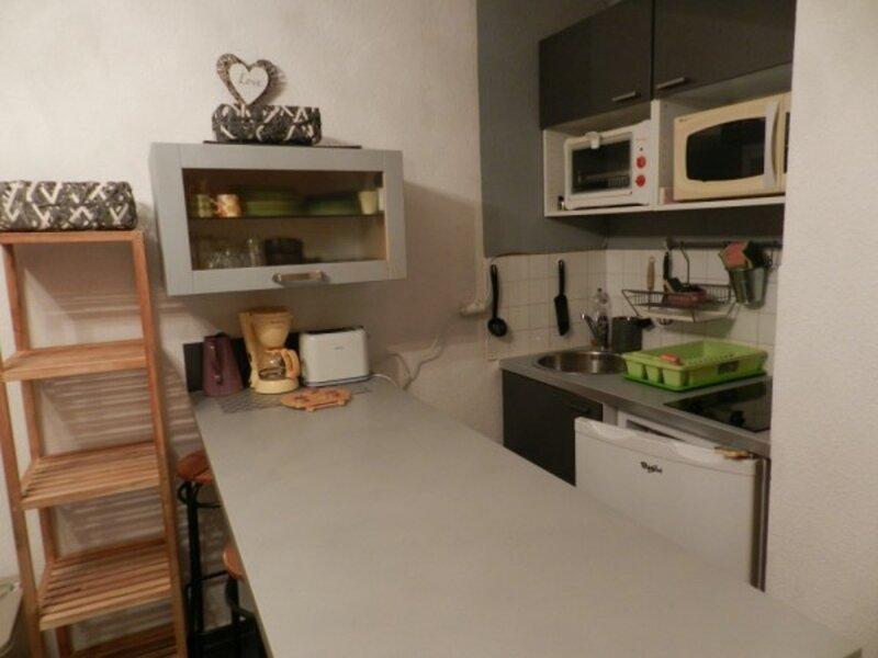 LE PLEYNET - 3 pers, 18 m2, 1/0, alquiler vacacional en La Ferriere