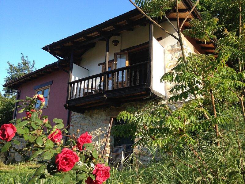Casa Llenín, fully renovated finca in the foothills Picos de Europa, holiday rental in Bobia De Arriba