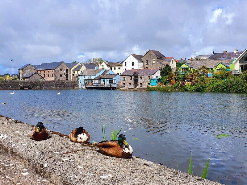 Castle View, Pembroke, aluguéis de temporada em Hundleton
