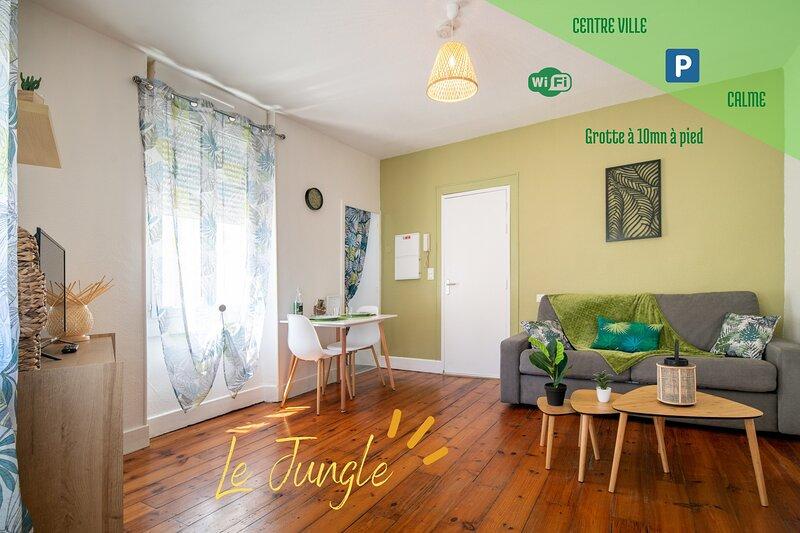 'Le Jungle' hyper centre, tout confort (wifi), holiday rental in Lestelle Betharram