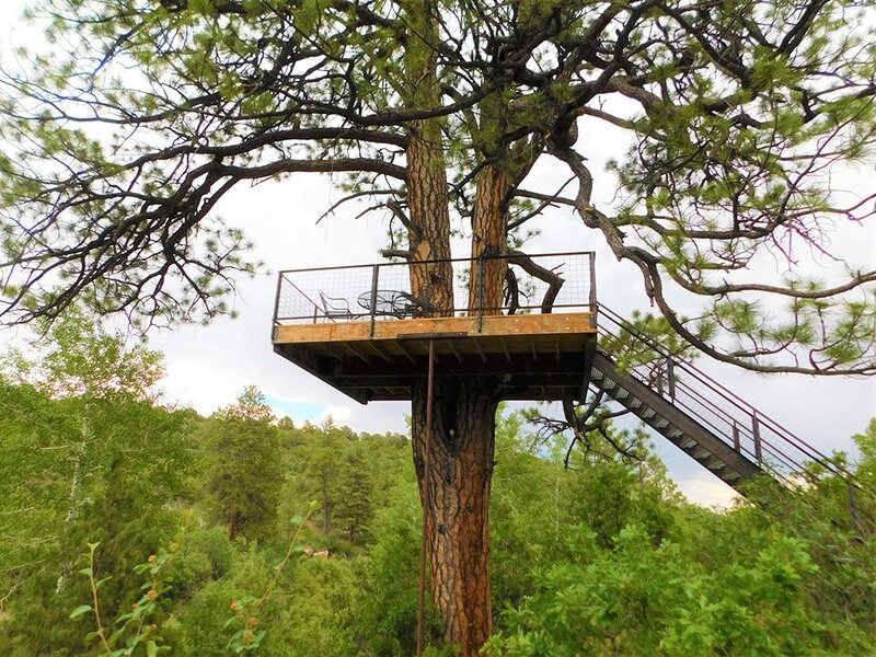 Shared Treehouse