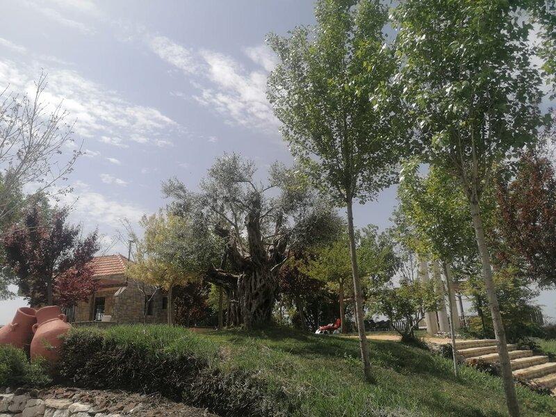 Terre et Ciel, holiday rental in Kfardebian