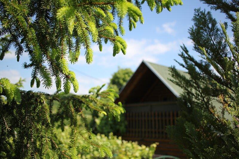 Nature Ecco, vacation rental in Raska