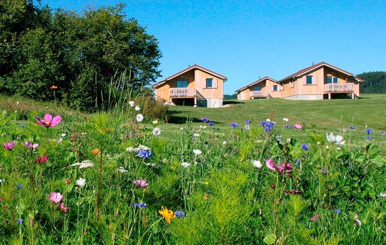 Chalet de Trémontagne - Cytise, holiday rental in Clairvaux-les-Lacs