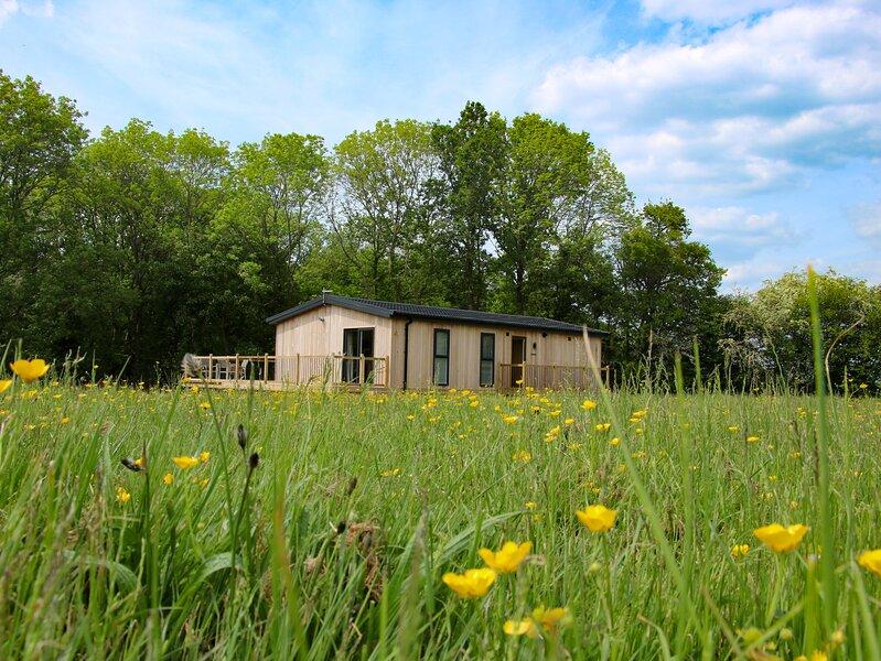 Cedar Lodge, Billingsley, holiday rental in Stottesdon