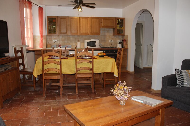 Spacieux appartement dans maison de charme en pays cathares, holiday rental in Couiza