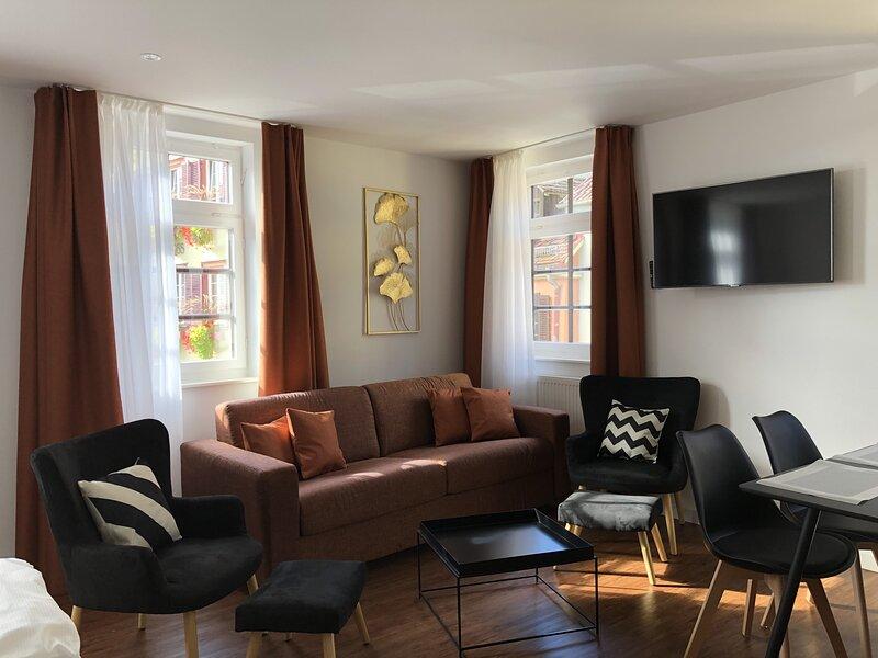 Appartement mit Schlossblick (2), holiday rental in Tübingen